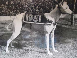 1951 derby winner.JPG (18593 bytes)